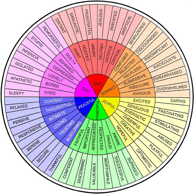 http://aca-arizona.org/wp-content/uploads/2013/02/650_Feelings-Wheel-Color.jpg
